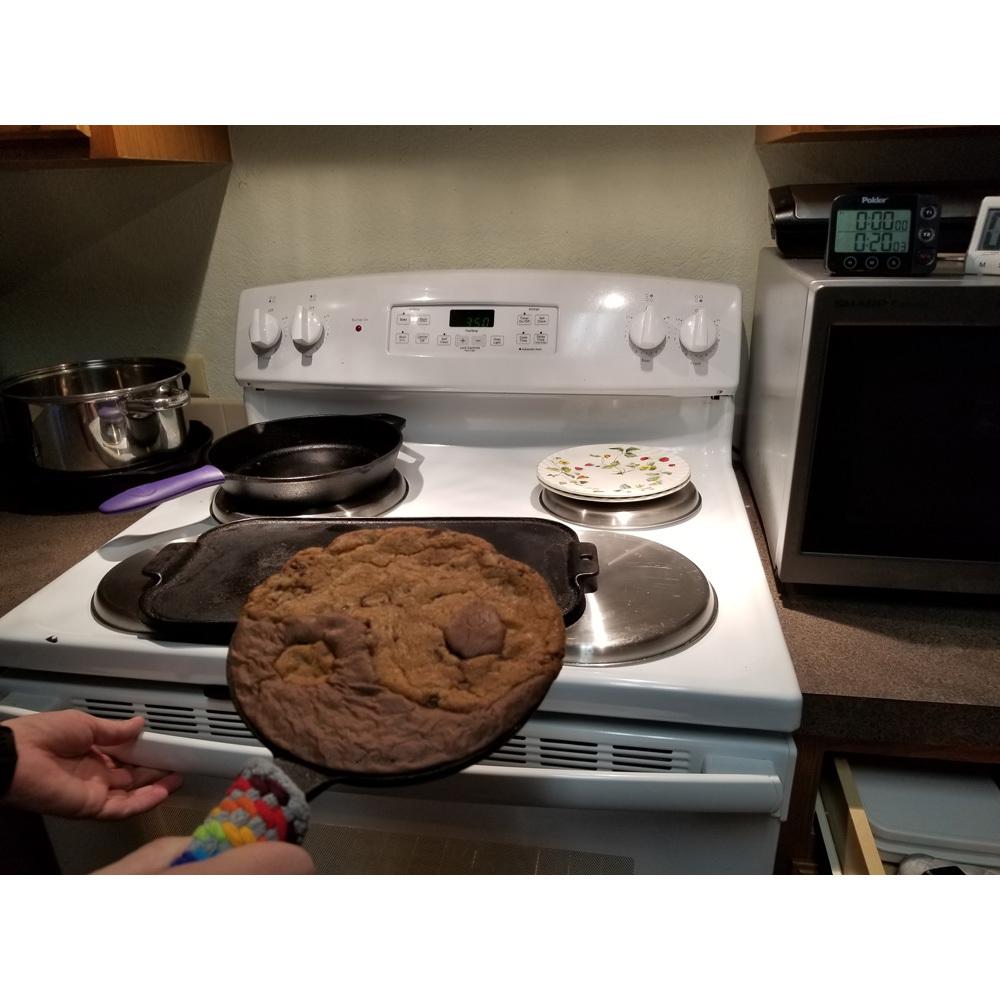 Brookie SkOokie Experiment 04