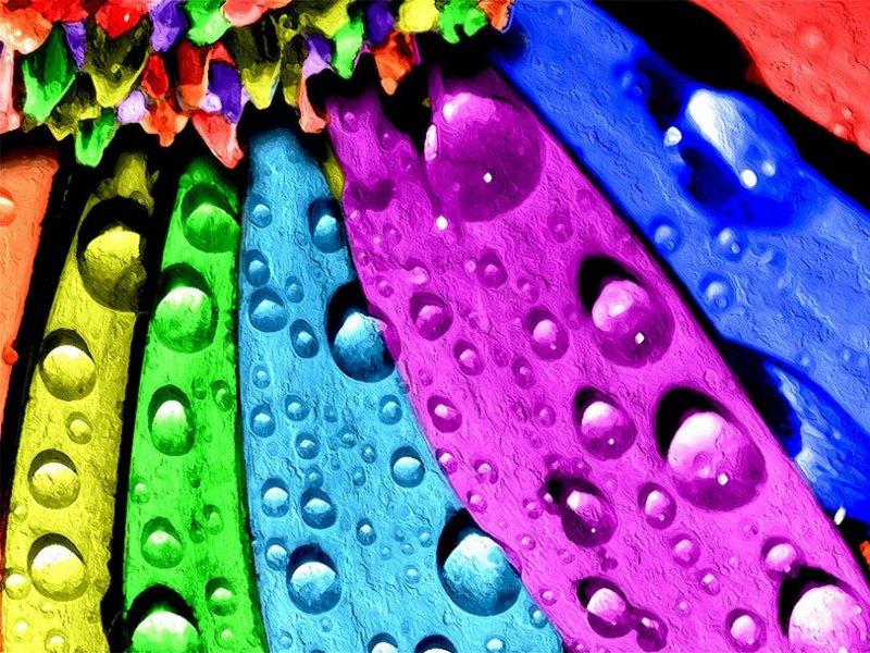 Photo Graphic | Vibrant-Hues